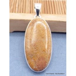 Pendentif en Corail fossile indonésien oval Pendentifs pierres naturelles XV26.5