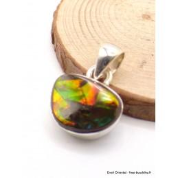 Pendentif Ammolite du Canada orange verte Pendentifs pierres naturelles AW21