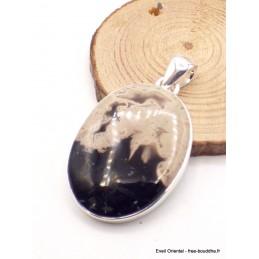 Pendentif oval en Bois pétrifié Pendentifs pierres naturelles AW34