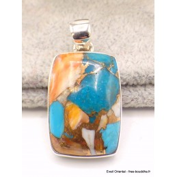 Pendentif Turquoise Spiny Oyster rectangulaire Bijoux en Turquoise Spiny Oyster AW36.2