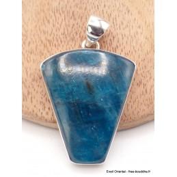Grand Pendentif Apatite bleue forme écusson Pendentifs pierres naturelles AW50