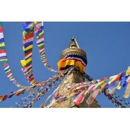 Drapeau de prières 25 drapeaux 13 x 15 cm drapeau PM
