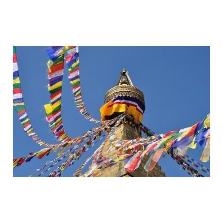 Drapeau de prières 25 drapeaux 13 x 15 cm