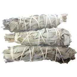 Sauge blanche de Californie 3 x 35 gr SAU3X35