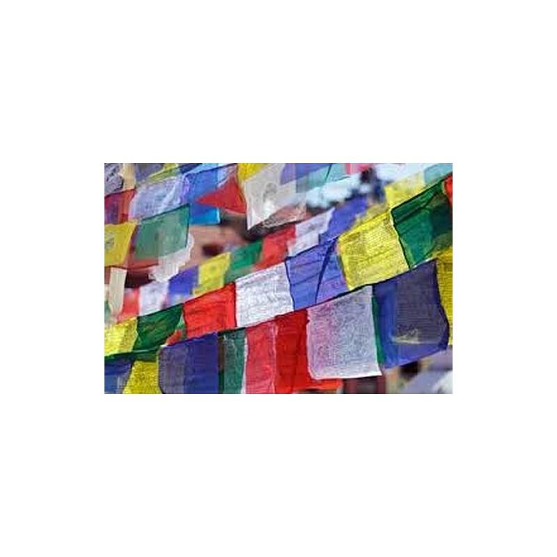 Drapeau de prières 25 drapeaux Grand modèle 15 x 23 cm Drapeaux tibétains GM