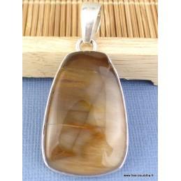 Pendentif Goutte en Bois pétrifié Pendentifs pierres naturelles k15