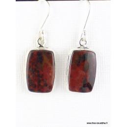 Boucles d'oreilles Jaspe sanguin Héliotrope Boucles d'oreilles en pierres WL52.4