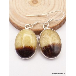 Boucles d'oreilles ovales en Septaria Bijoux en Septarian XV108
