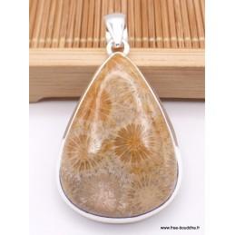 Pendentif goutte en Corail fossile indonésien Pendentifs pierres naturelles XV26.2