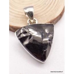 Pendentif Shungite triangulaire Pendentifs pierres naturelles PAC78.5