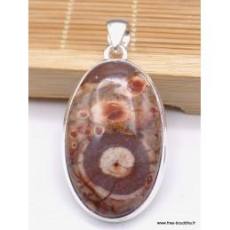 Pendentif Jaspe Oeil d'Oiseau mexicain rouge brun Pendentifs pierres naturelles WL66.5