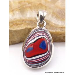 Pendentif Fordite Agate Detroïte rouge bleue Pendentifs pierres naturelles XV17.3